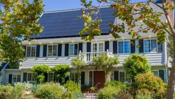 Professional Solar Panel Cleaning